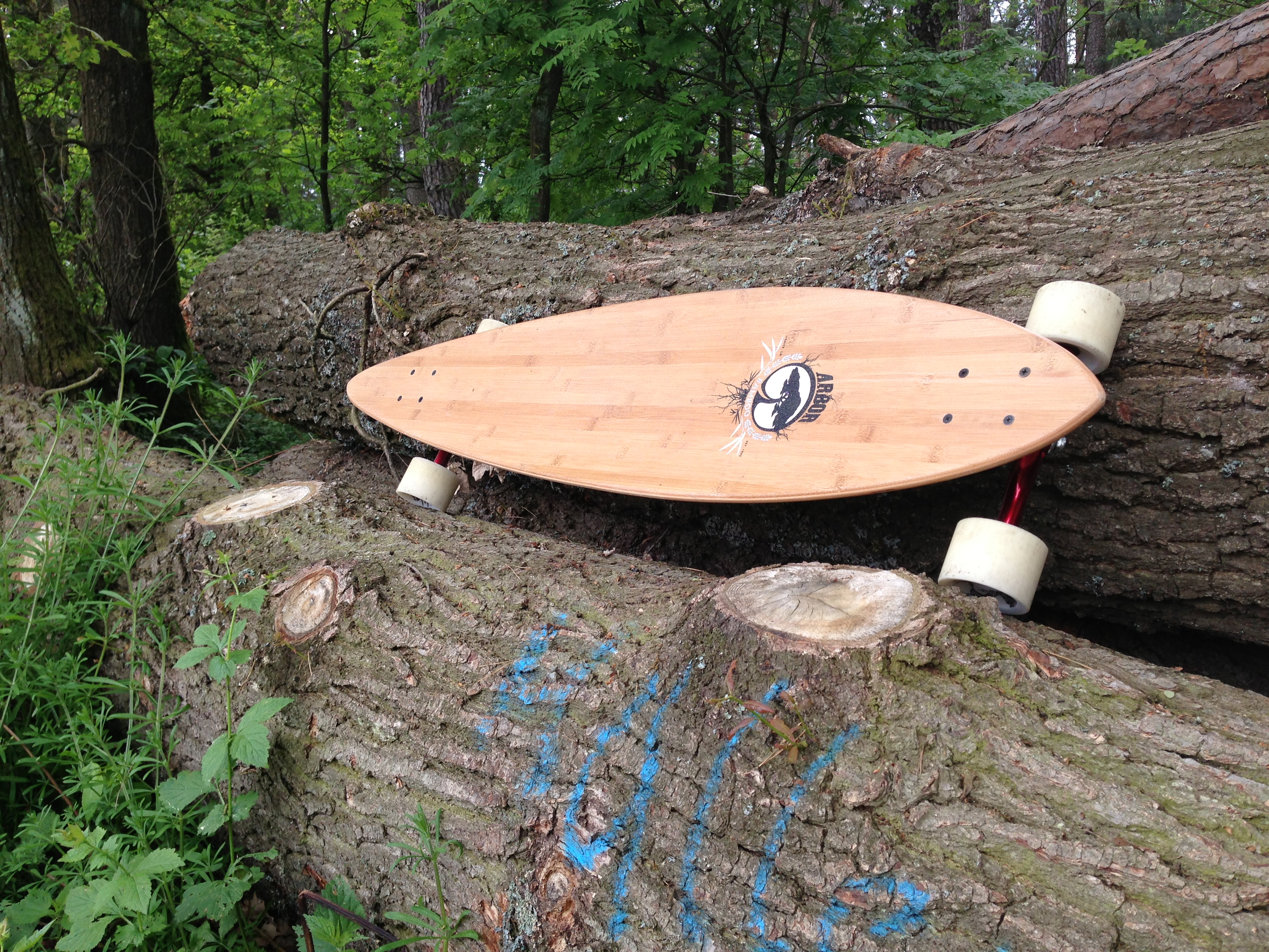 Test Review Das Longboard Arbor Timeless Bamboo